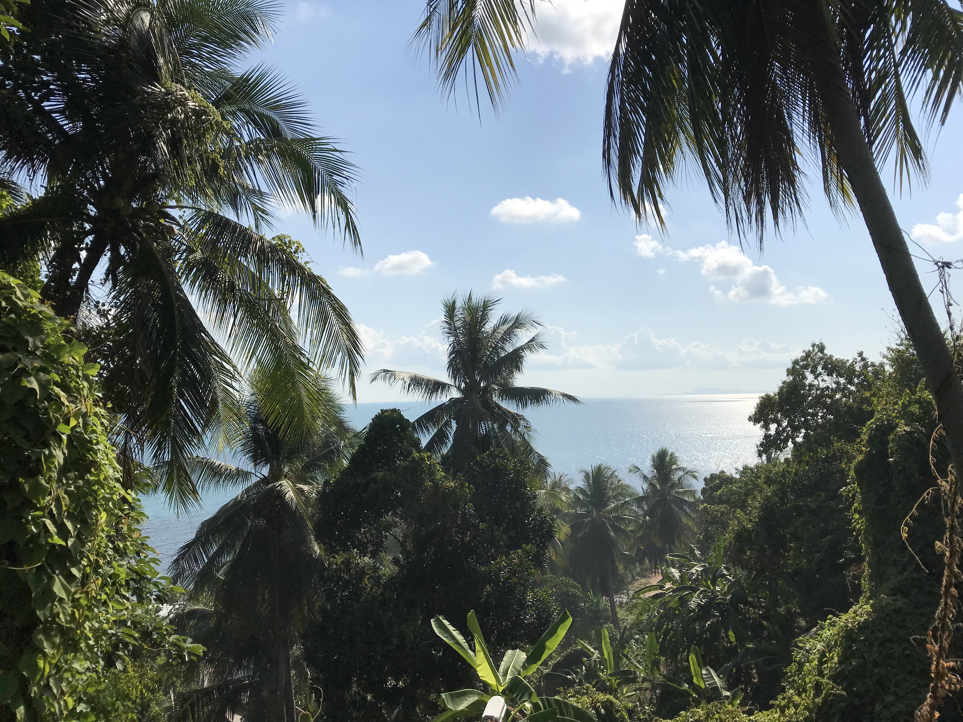パンガン島