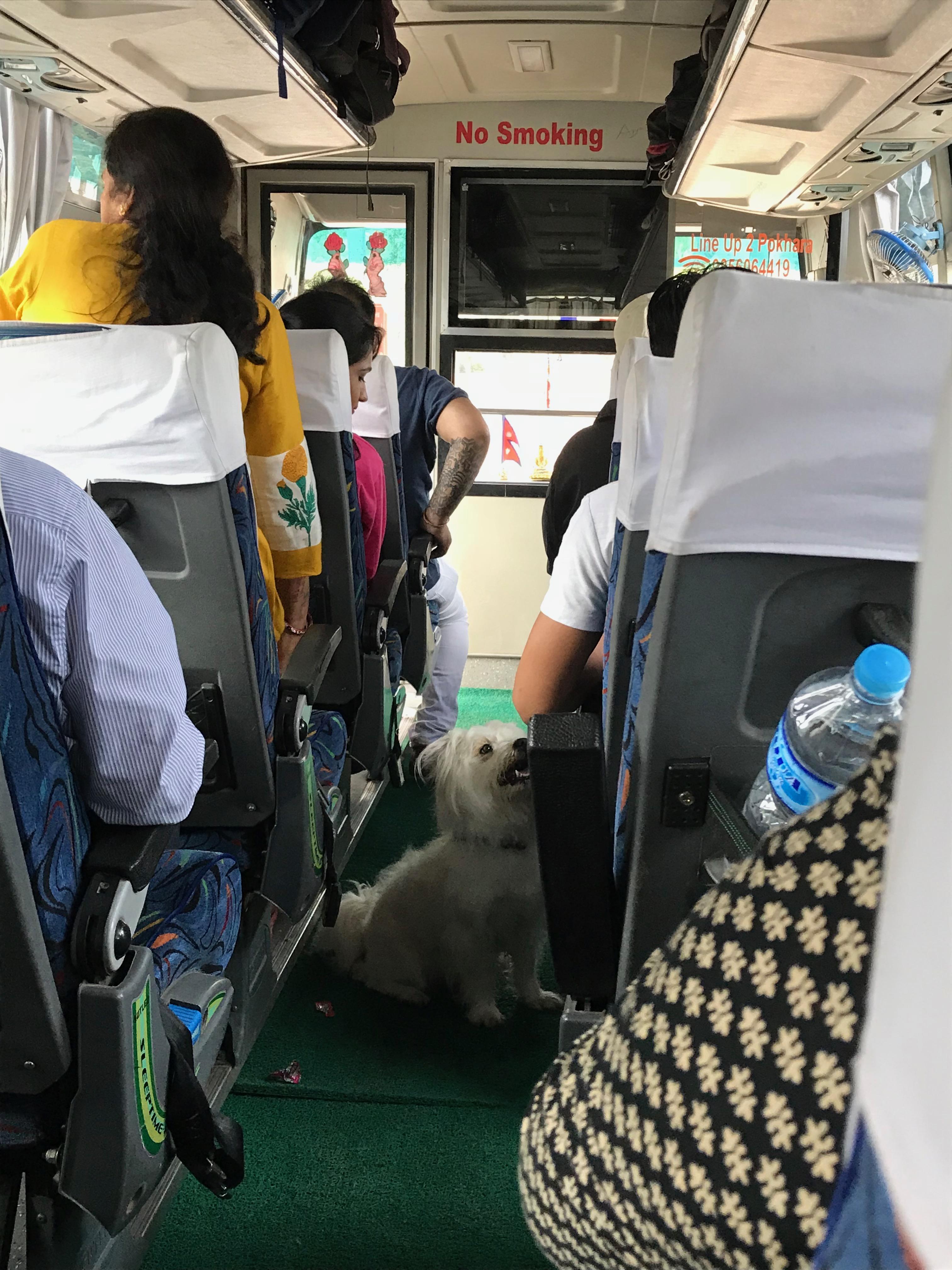 カトマンズ〜ポカラ バス