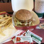 デリー駅でアーグラ行きの切符を買ってマックでマハラジャバーガーを食べてみる