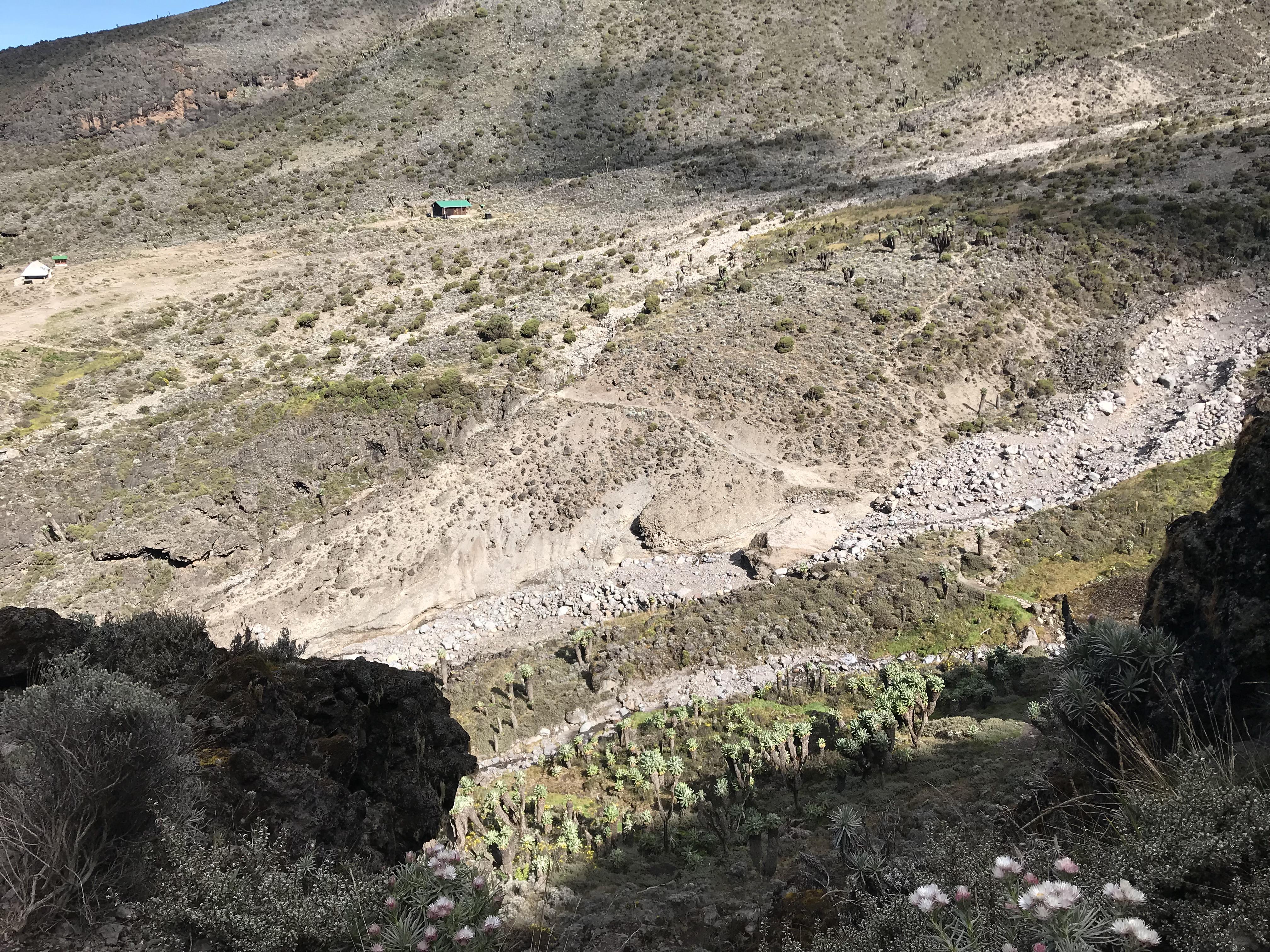 キリマンジャロ登山4日目