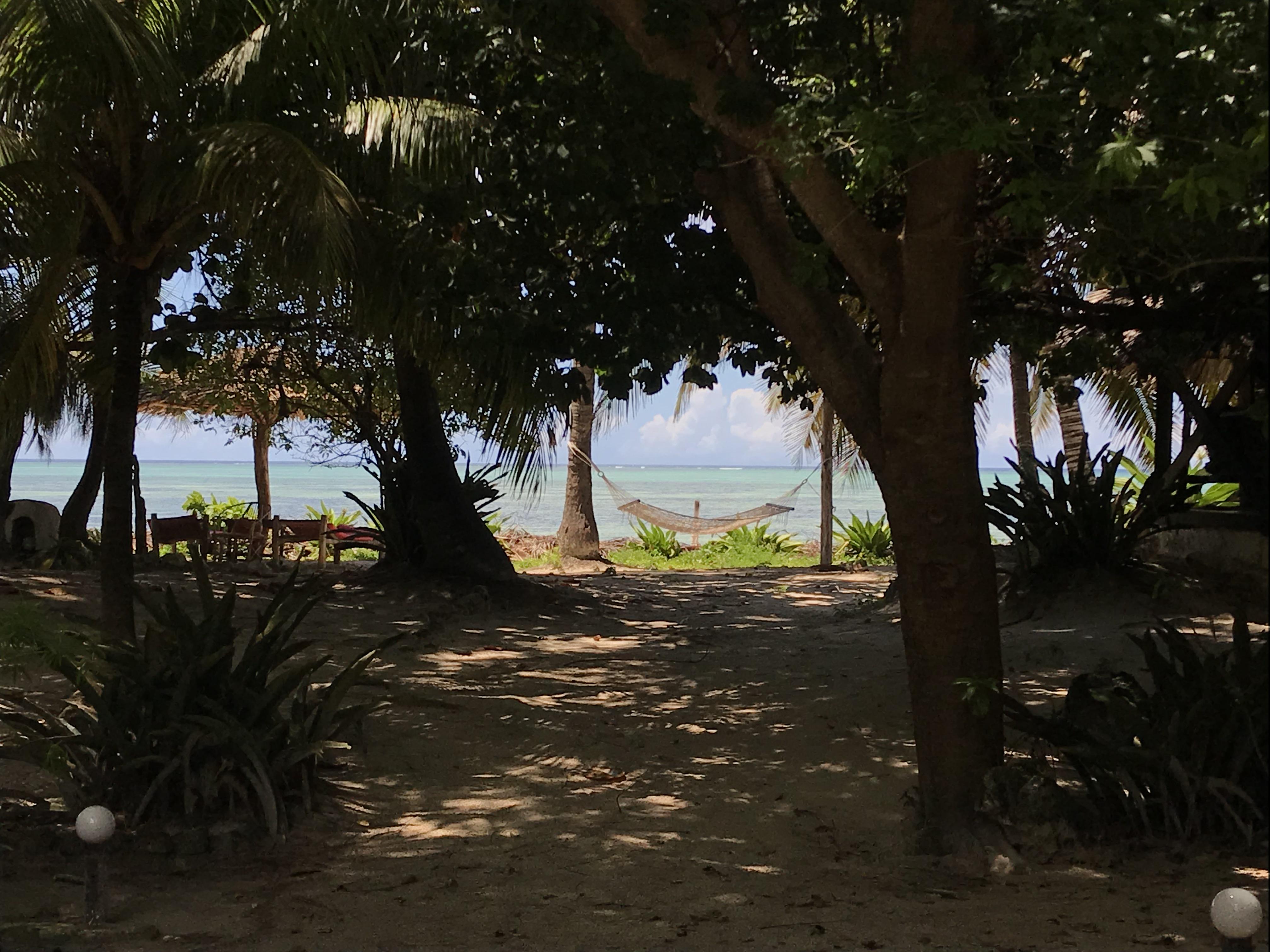 パラダイス ビーチ バンガローズ