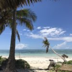 パラダイスビーチバンガローズという天国