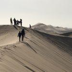 ナミブ砂漠最大の砂丘デューン7に登ってみよう