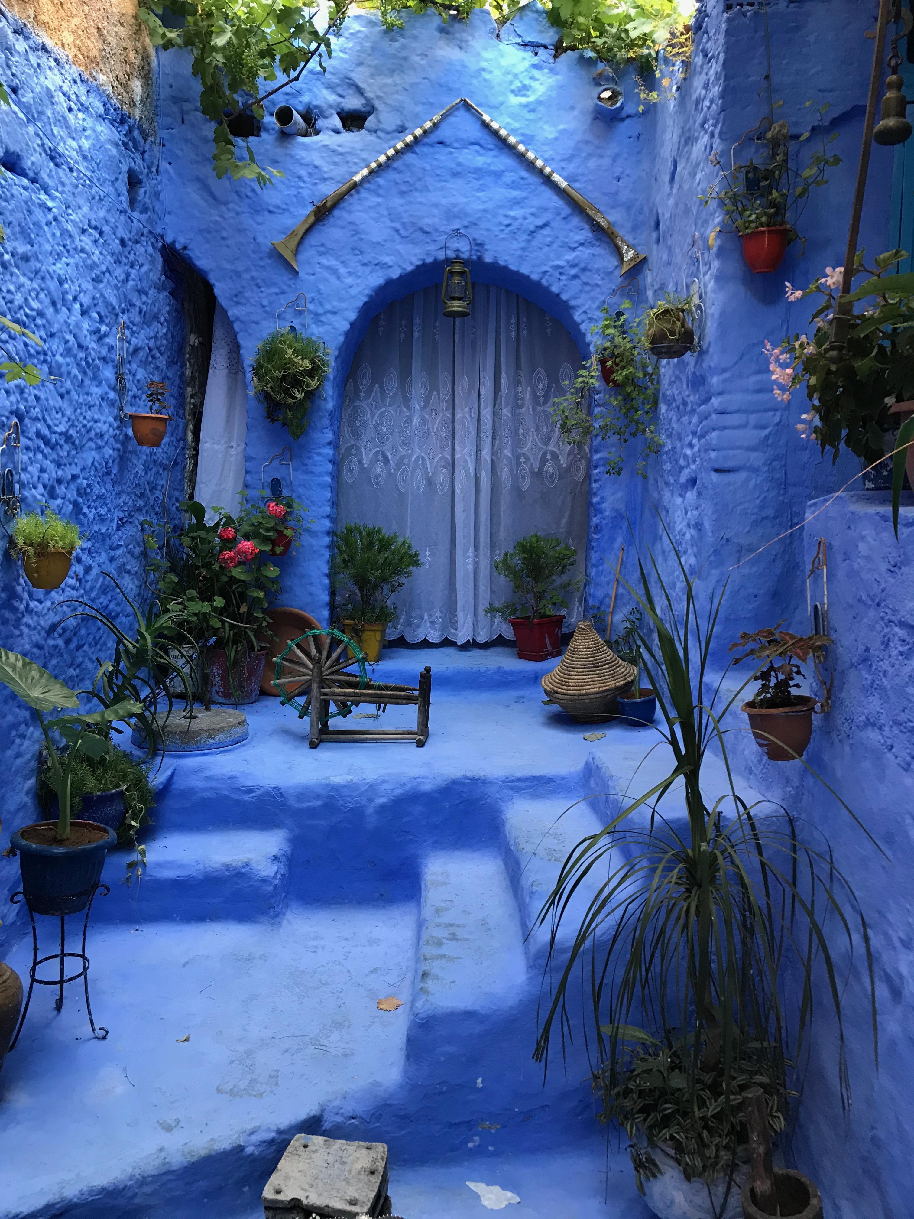 写真撮影有料の庭