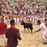 闘牛場に閉じ込めて素人に闘牛させる牛追い祭りの無茶振りがすご過ぎ(笑)