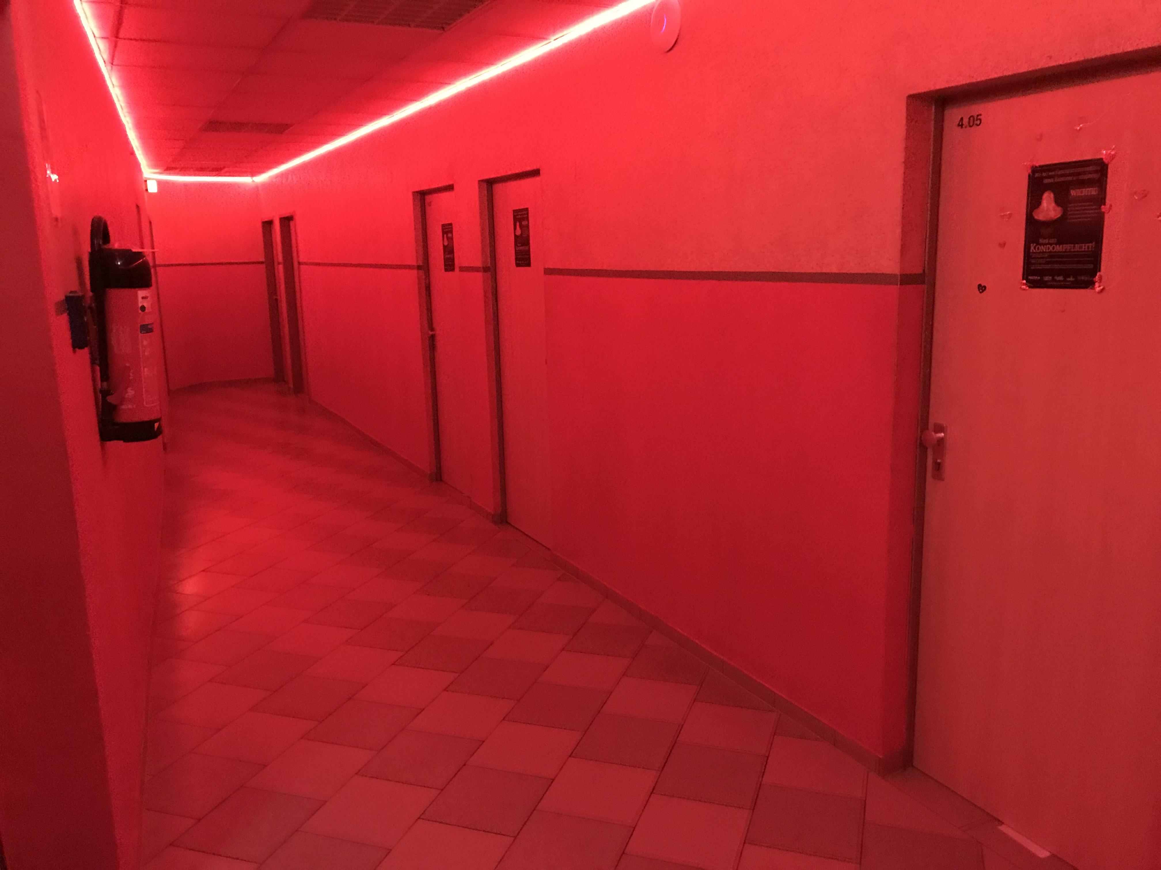 フランクフルトエロスセンター