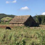 キューバの田舎ビニャーレス渓谷