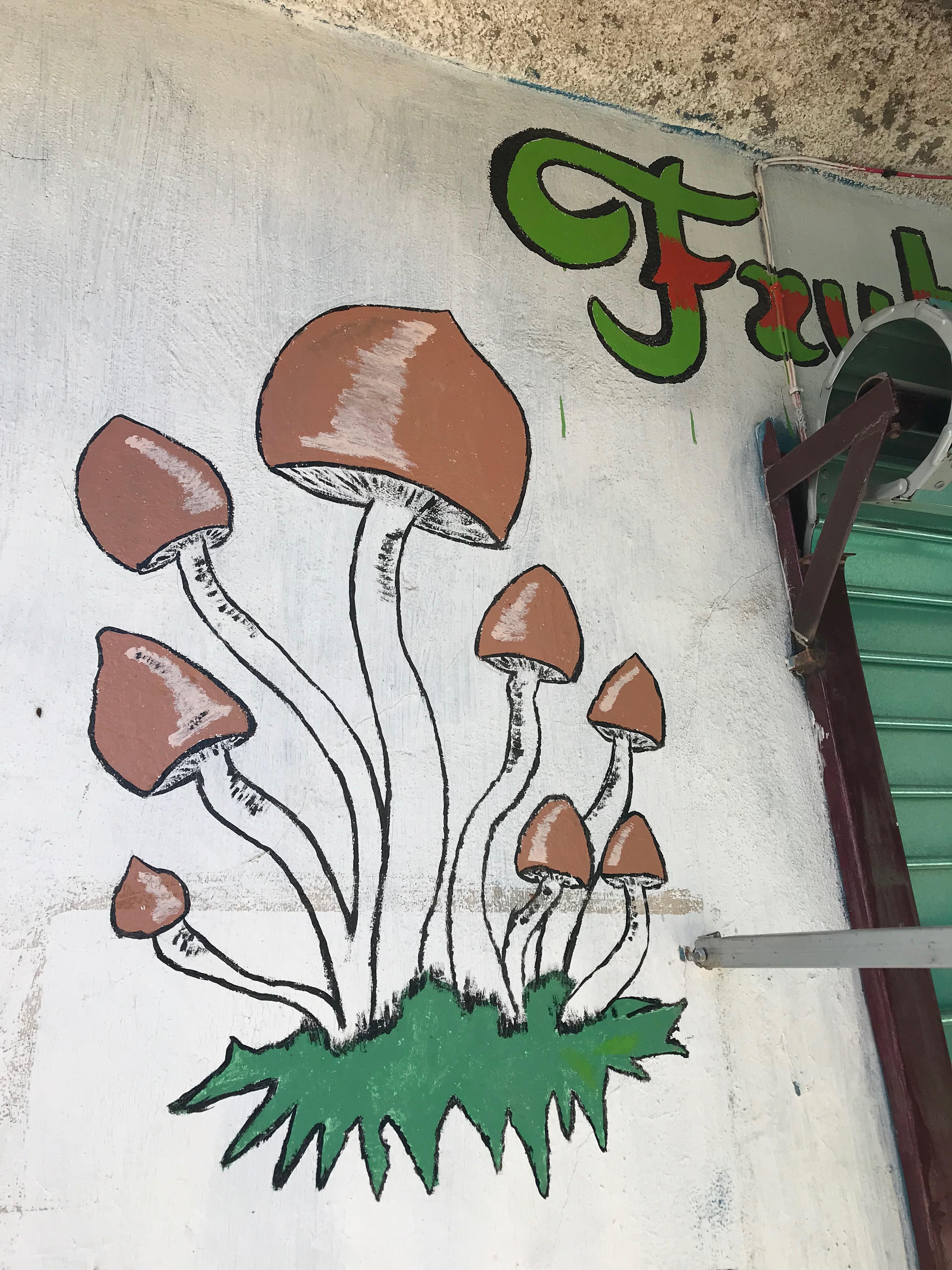 サンホセ・デル・パシフィコ