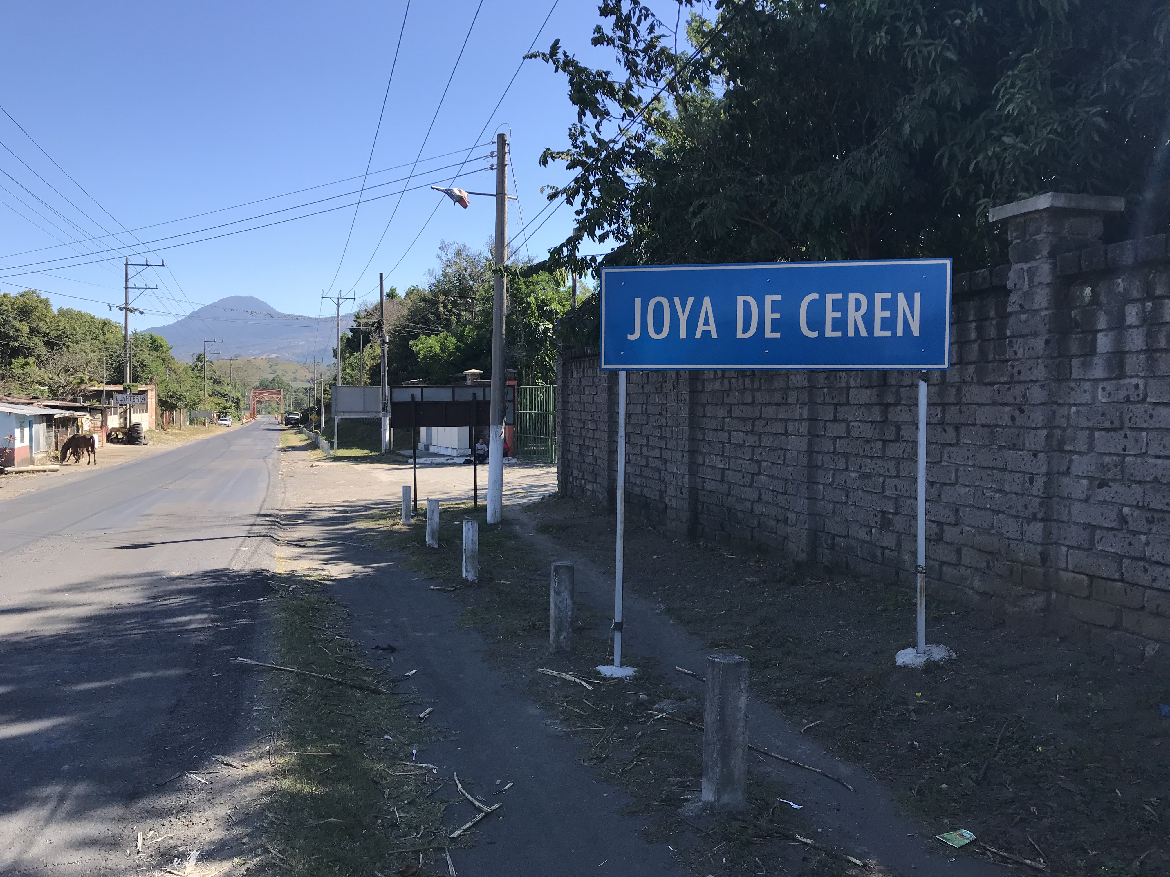 ホヤ・デ・セレン