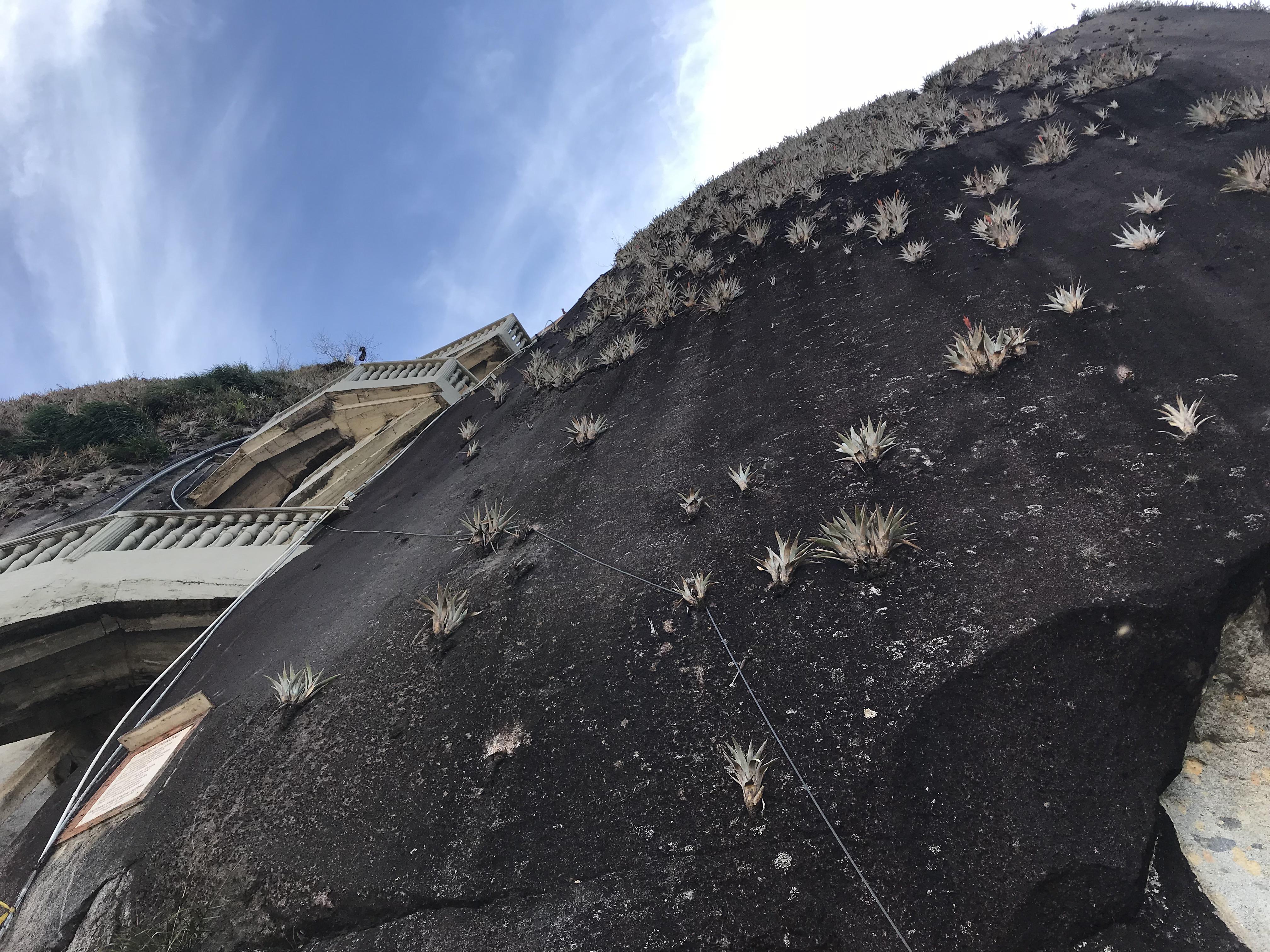Piedra del Peñol