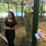 世界一危険なはずのルハン動物園が変わってた