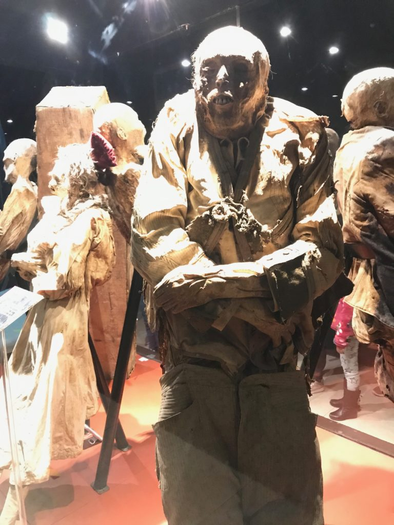 Museum of the Mummies of Guanajuato ミイラ博物館