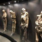 【閲覧注意】グアナファトのミイラ博物館が凄かった