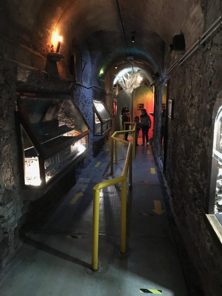 Museum of the Mummies of Guanajuato ミイラ博物館