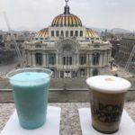 眺めの良いカフェ「Finca Don Porfirio Juarez」に行って来た